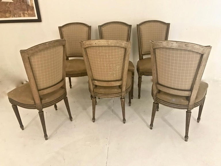 Louis XVI-Style Dining Chairs, Set of 6 For Sale 5