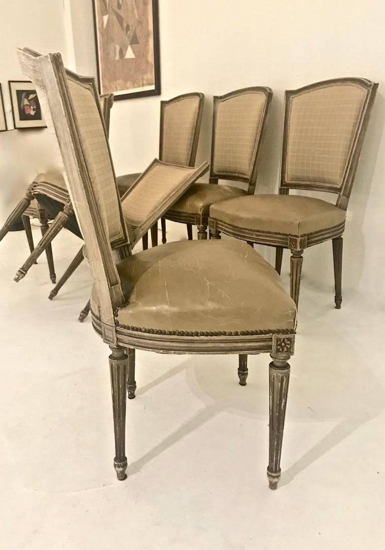 Louis XVI-Style Dining Chairs, Set of 6 For Sale 8