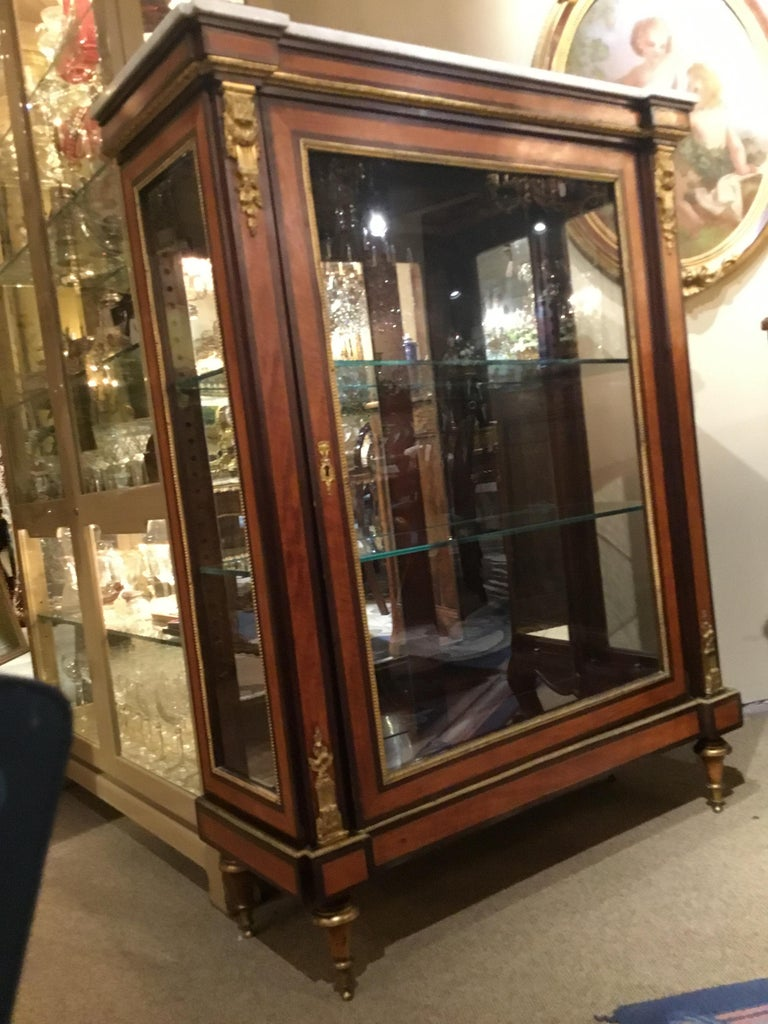 Louis XVI-Style Display/Vitrine Cabinet in Rosewood with Bronze Dore Mounts 6