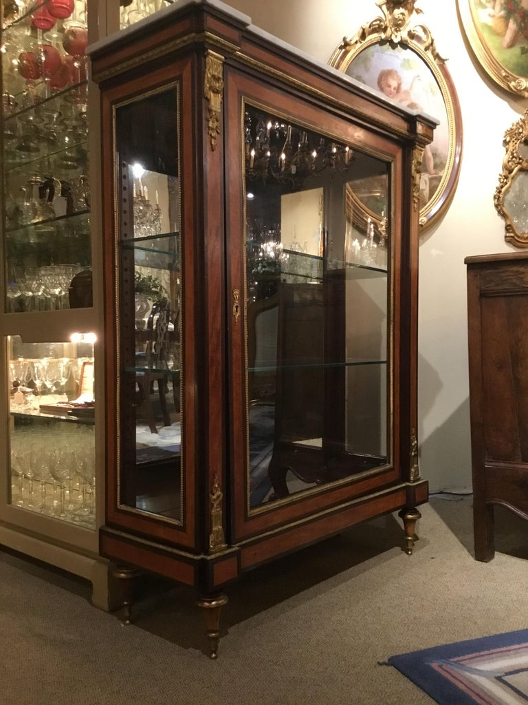 Louis XVI-Style Display/Vitrine Cabinet in Rosewood with Bronze Dore Mounts 7