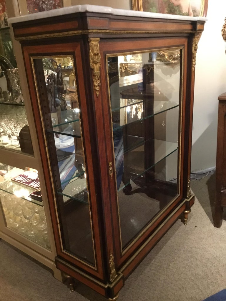 Louis XVI-Style Display/Vitrine Cabinet in Rosewood with Bronze Dore Mounts 1