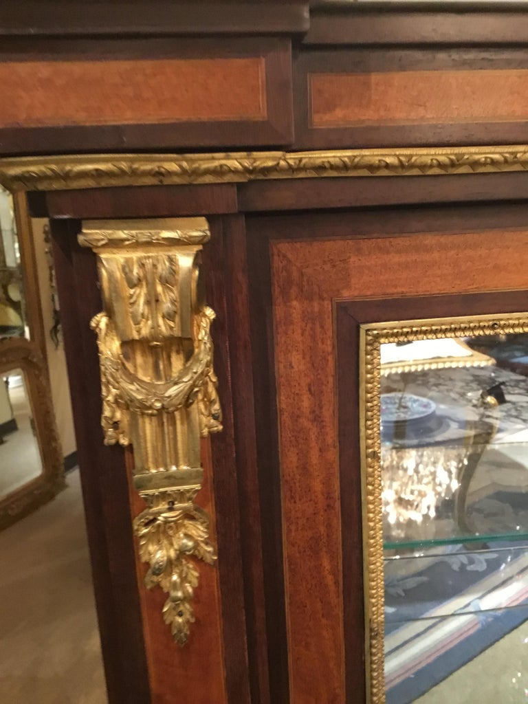 Louis XVI-Style Display/Vitrine Cabinet in Rosewood with Bronze Dore Mounts 3