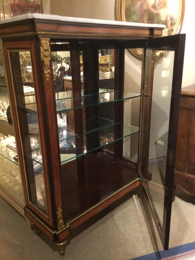 Louis XVI-Style Display/Vitrine Cabinet in Rosewood with Bronze Dore Mounts 4