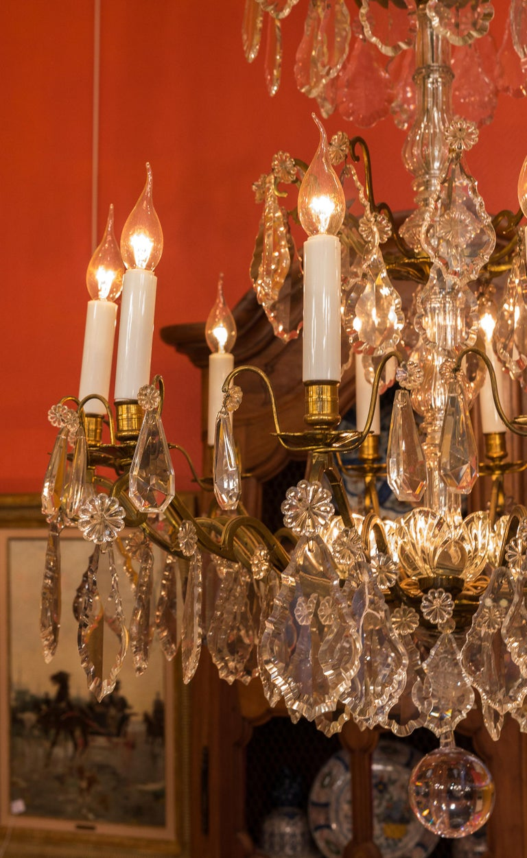Louis XVI Style French Mid-20th Century, Bronze & Crystal Chandelier, circa 1950 For Sale 1