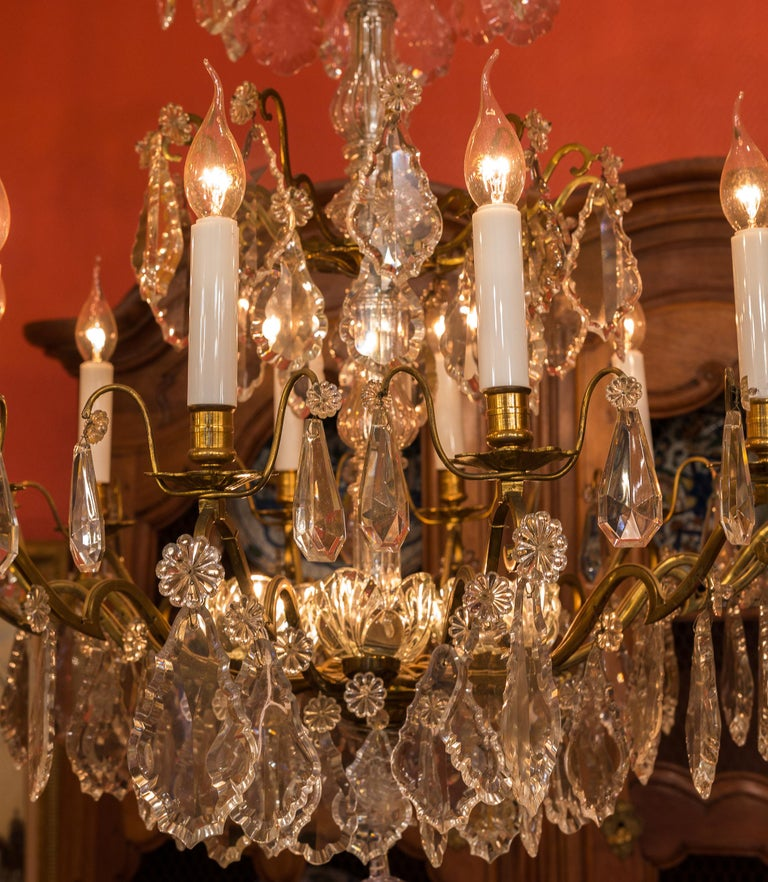 Louis XVI Style French Mid-20th Century, Bronze & Crystal Chandelier, circa 1950 For Sale 3