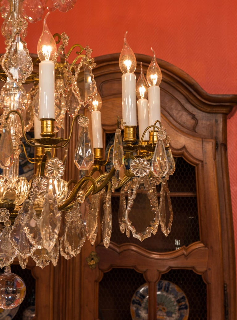 Louis XVI Style French Mid-20th Century, Bronze & Crystal Chandelier, circa 1950 For Sale 4