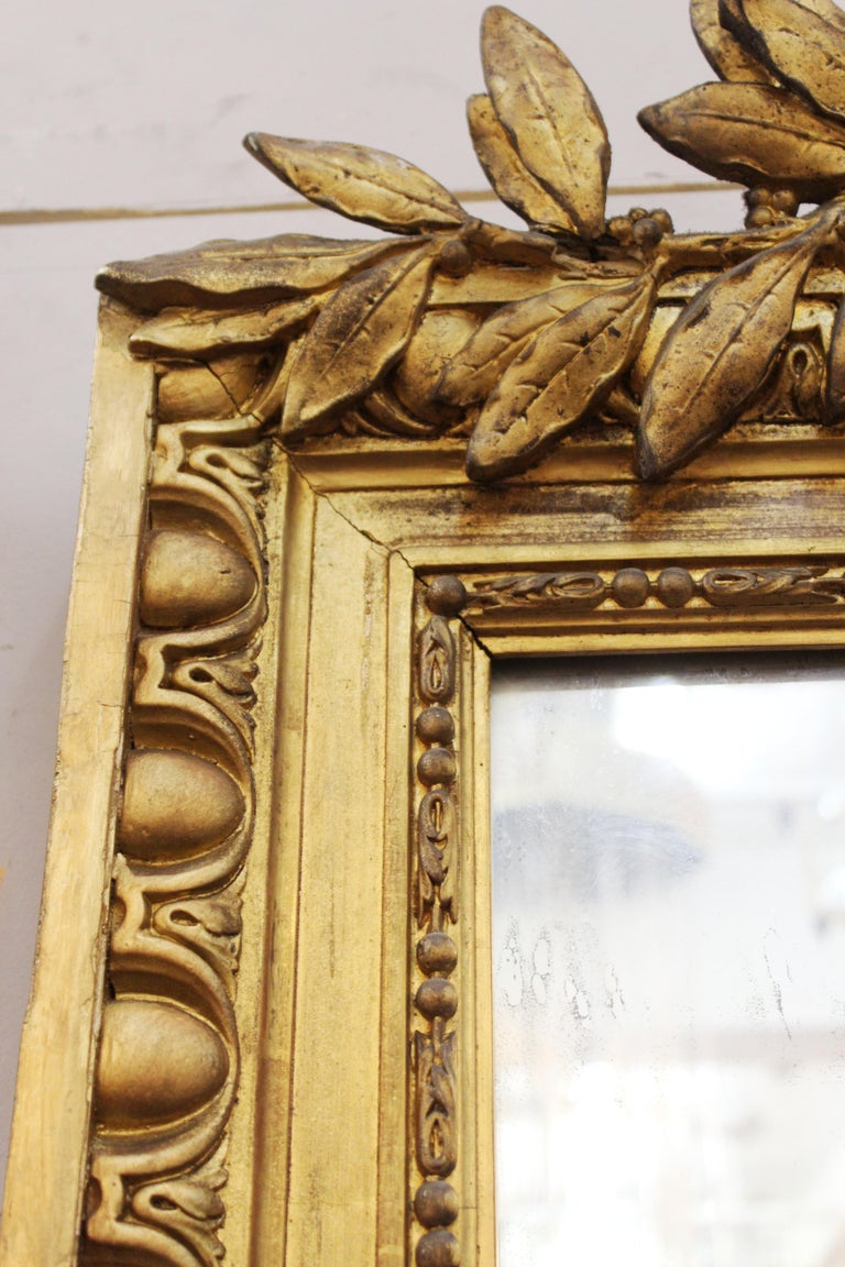 Louis XVI Style Giltwood Wall Mirror For Sale 6
