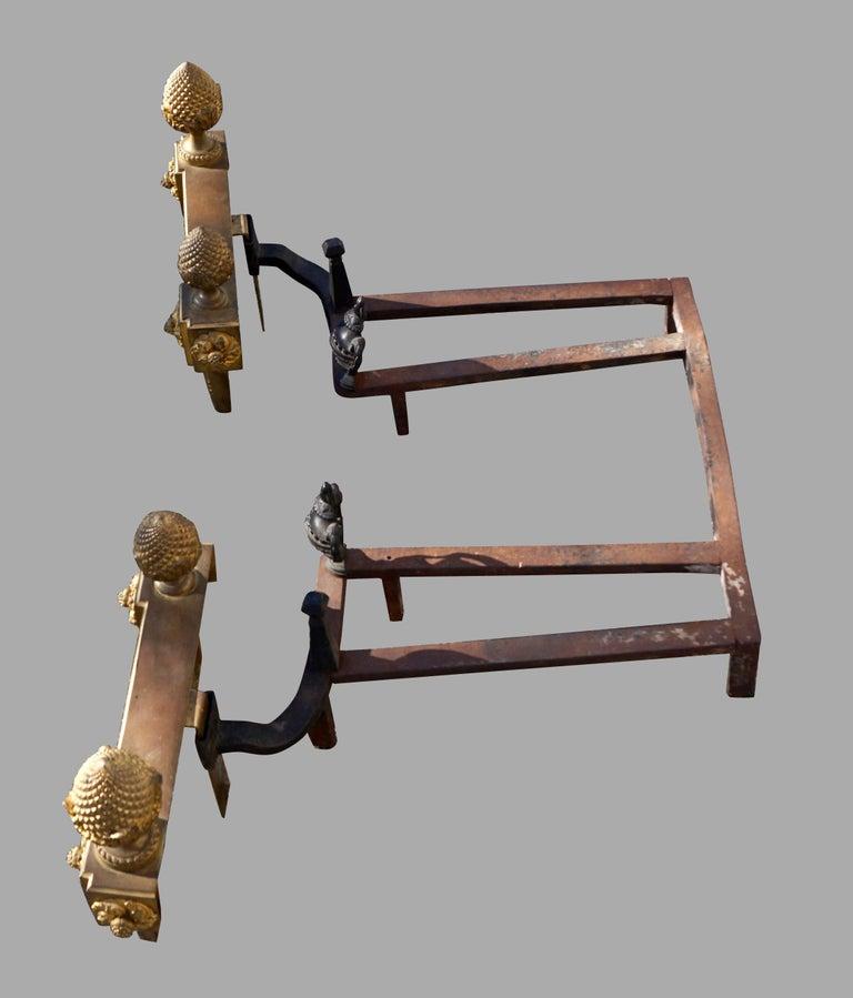 Iron Louis XVI Style Ormolu Fireplace Insert For Sale