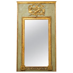 Neoclassical Trumeau Mirror with Garden Decoration Gilt Louis XVI