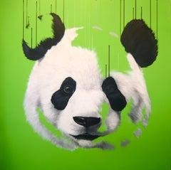 Pop Panda - Oil, Acrylic, Spray Paint, Deep Canvas, Surrealist, Nature, Modern