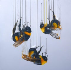 Louise McNaught, Ashes, Ashes, We All Fall Down, Animal Art, Contemporary Art