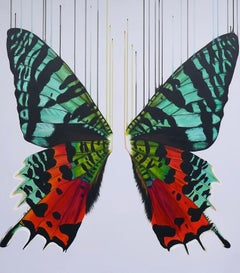 Louise McNaught, Hidden Rainbows, Limited Edition Print, Butterfly Art, Animal