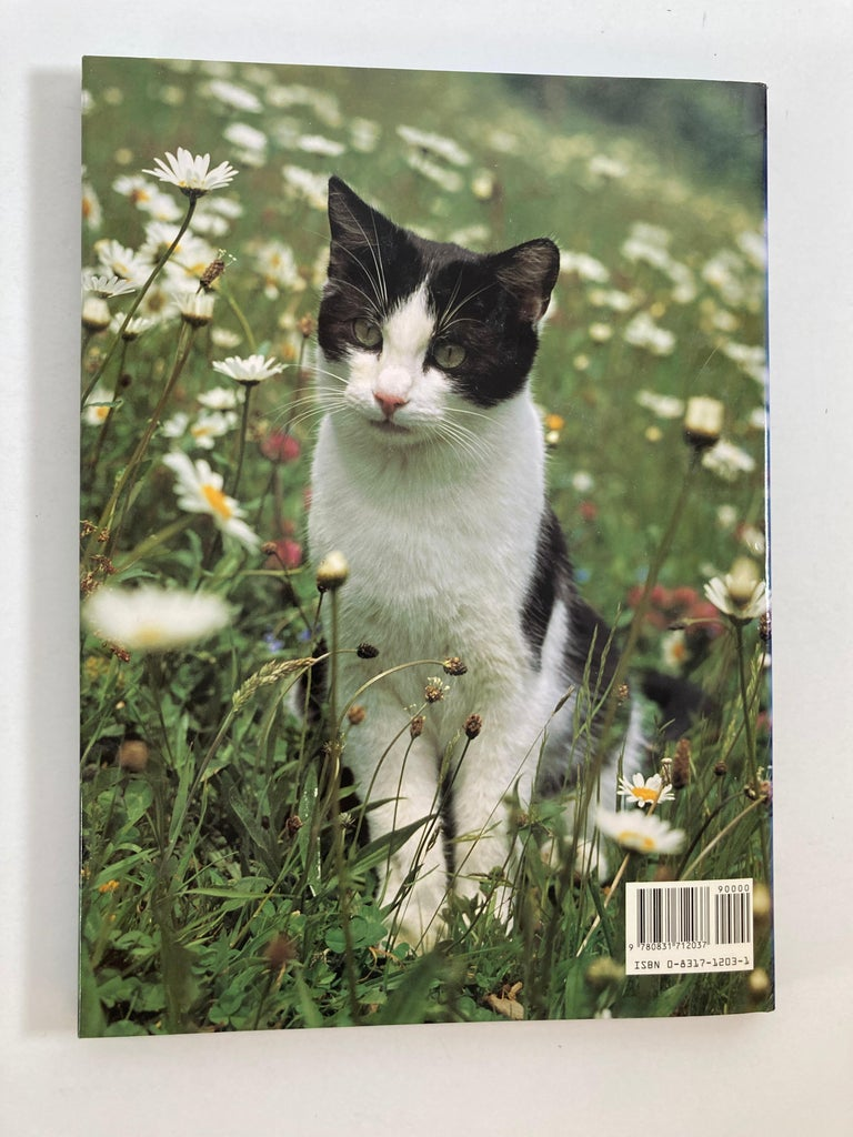 North American Love of Cats by Tom Howard Hardcover Book For Sale