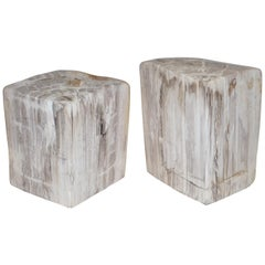 Lovely Pair of 180 Million Year Old Pretrified Fossil Wood Bookends Door Stops