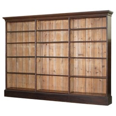 Lovely Victorian 1880 Mahogany and Oak Library Bookcase