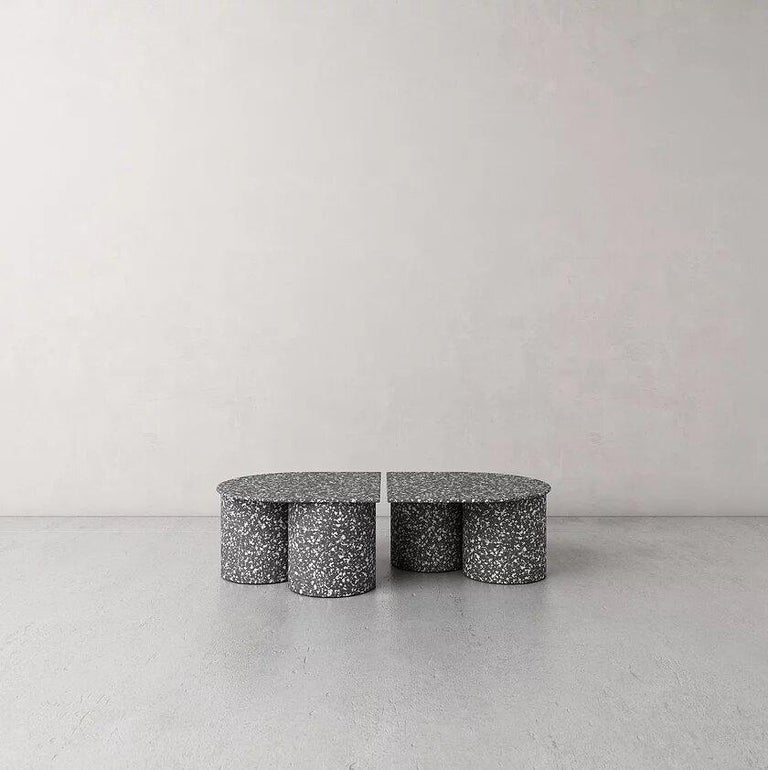 Low twins coffee table by Pietro Franceschini