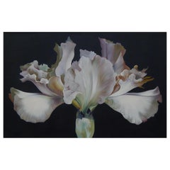 Lowell Nesbitt Oil Painting, Iris on Dark Grey, 1968