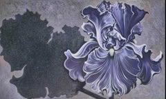 Shadow Iris