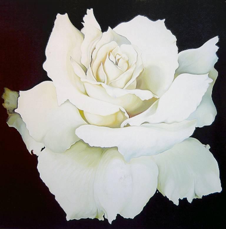 White Rose, Monumental Flower Painting by Nesbitt