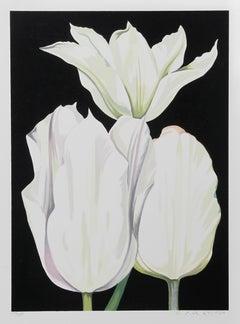 Three Tulips on Black
