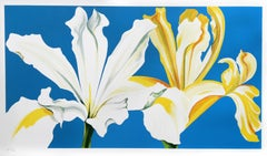 Two Irises on Blue