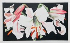 White Lily on Black