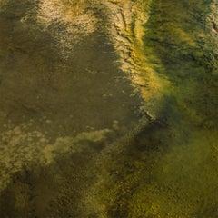 Study X (Yellowstone National Park) - Landscape Photography