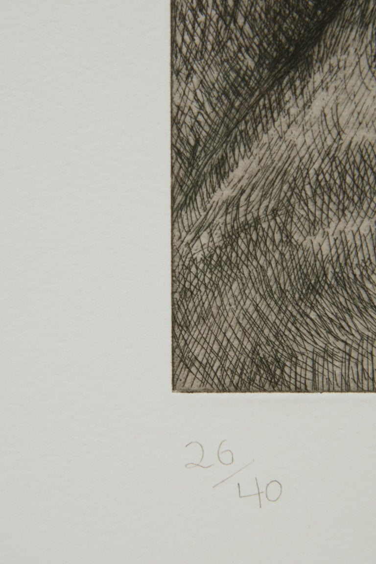 Etching on T.H.S. Saunders paper Edition of 40 Frame available upon request Initialed and numbered in graphite (lower recto)