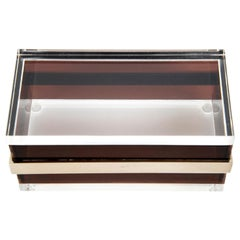 Lucite and Steel Box in the Style of Gabriella Crespi, Italy, 1970