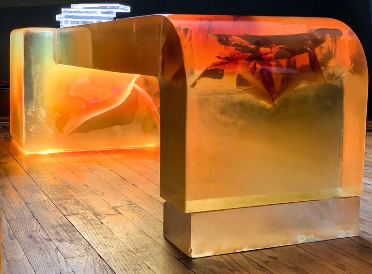Argo sculpture / Lucite coffee table by Gary Gutterman for Axius designs 1977. 