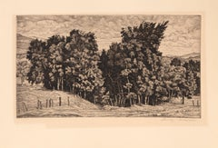 Birch Group, Etching by Luigi Lucioni