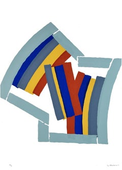 Color Lines - Original Screen Print by Luigi Montanarini - 1970s