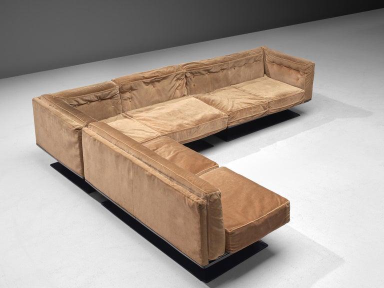 Mid-20th Century Luigi Pellegrin for MIM Roma Sectional Sofa in Light Brown Velvet Upholstery For Sale