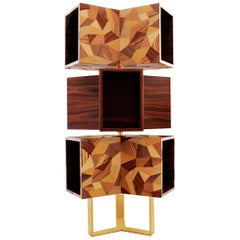 "Luxury ""TriBeCa"" Modern and Contemporary Cabinet Bookcase in Ironwood and Brass"