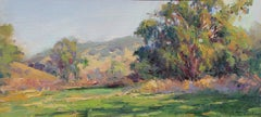 Eucalyptus and Oaks