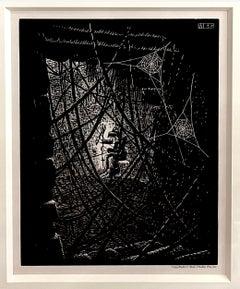 Cobwebs #154