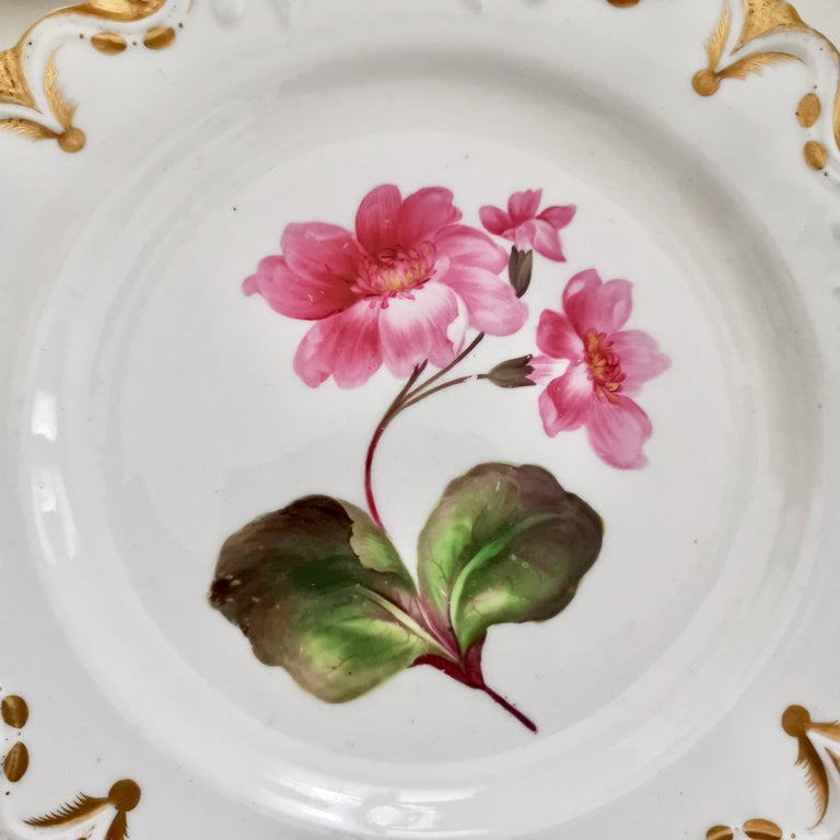 English Machin Porcelain Plate, White, Moustache Shape with Pink Flower, Regency