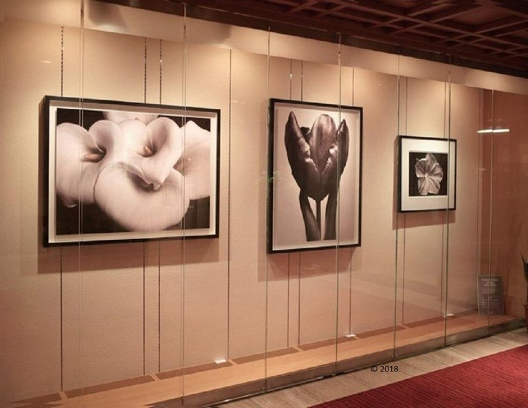 Zen Beauty - Contemporary black and white photography of Flower series - medium - Photograph by MAE Curates
