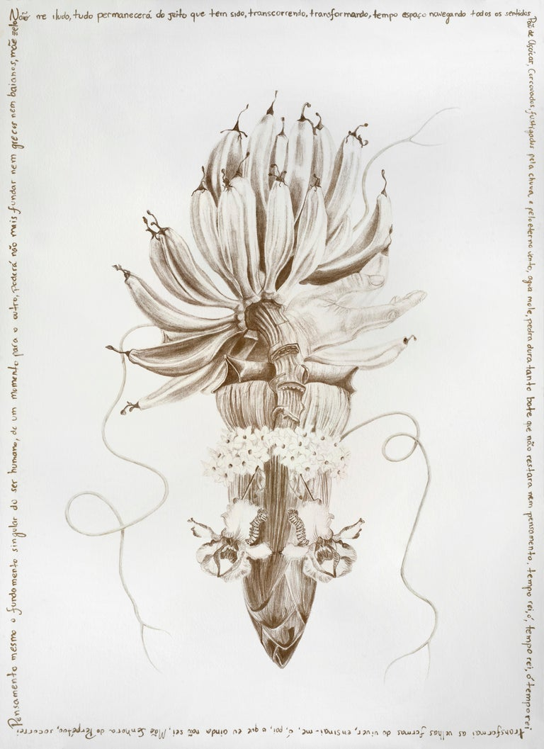 'The Family Tree' Complete Series by Magda von Hanau Limited edition prints  2/8 + 1 AP.  Photograph of the original artist drawing intervened with metallic-gold Japanese ink and pencil by the artist.  Each edition is unique as it is intervened by
