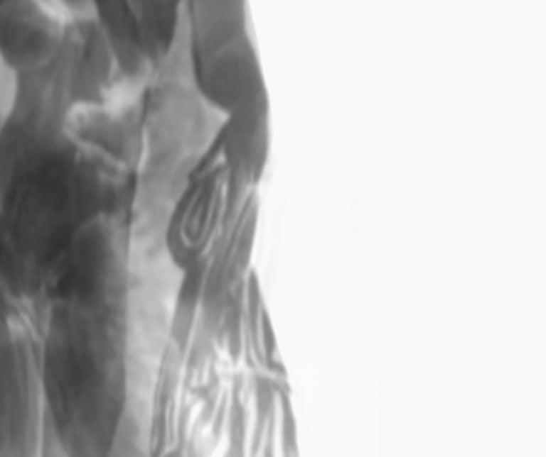Div-Ine XI, Limited edition B&W Photograph, Multiple exposer photography from a video slide.   Limited edition print 1/5 + 1 AP.  Unframed. Div-Ine celebrates the ethereal feminine, sacred forms, and life.  Div-Ine depicts Women's as subject matter