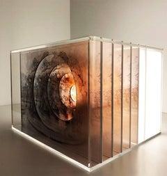 O Cavalo, Light Box Sculpture, 2017
