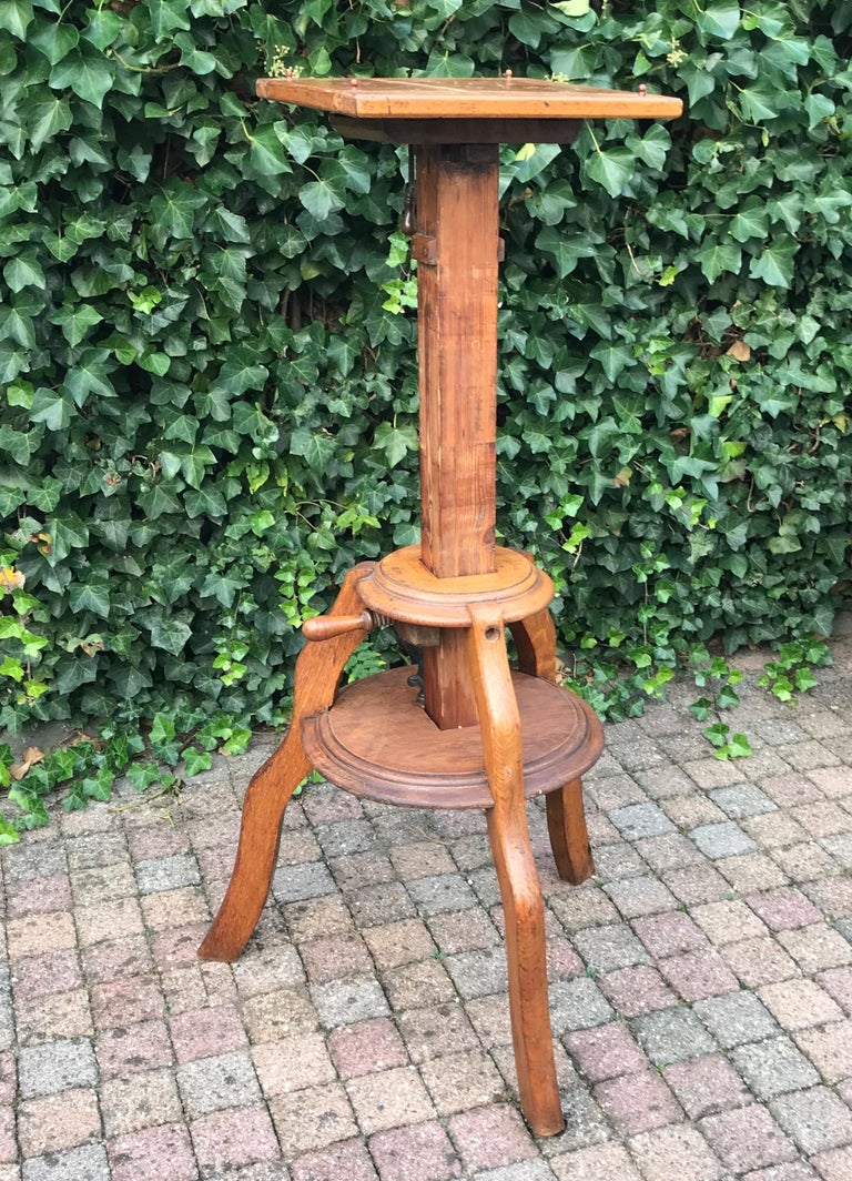 Magnificent & Adjustable Wooden Sculpture or Plant Stand, Column / Pillar Easel For Sale 8