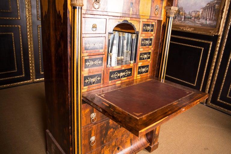Magnificent Exotic Secretaire in the Biedermeier Style Palisander For Sale 1