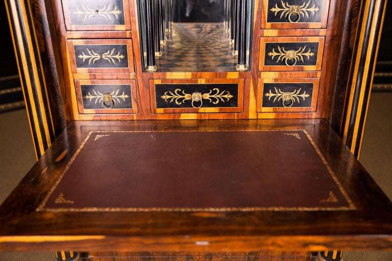 Magnificent Exotic Secretaire in the Biedermeier Style Palisander For Sale 2
