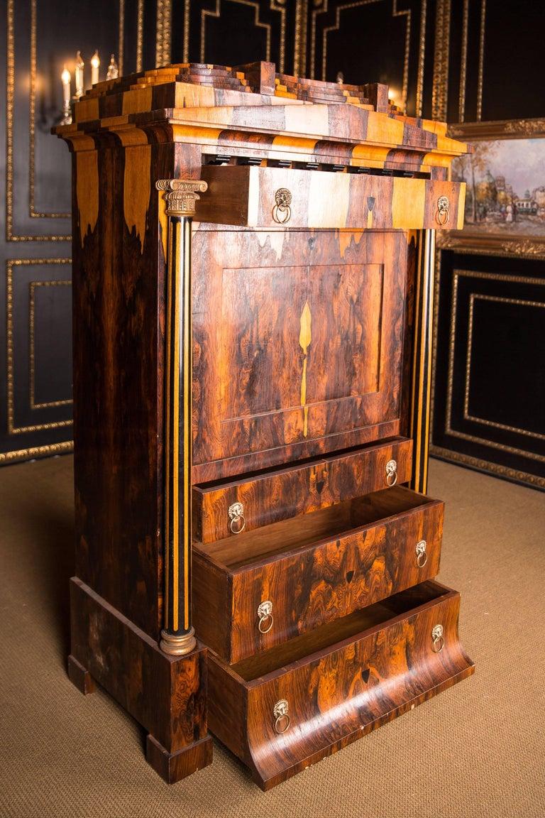 Magnificent Exotic Secretaire in the Biedermeier Style Palisander For Sale 4
