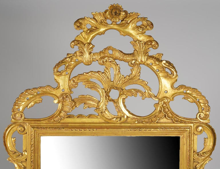 This elaborately carved giltwood mirror by Palladio dates to the mid-20th century and is fashioned in the rococo style with impressing foliate scrolls centering a rose at the very top. The quality of the gilt is superior with a comnination of high
