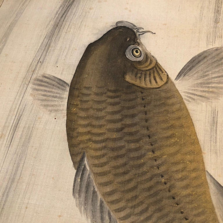 Magnificent Koi Fish Japanese Antique Hand-Painted Silk Scroll, Meiji Period For Sale 3