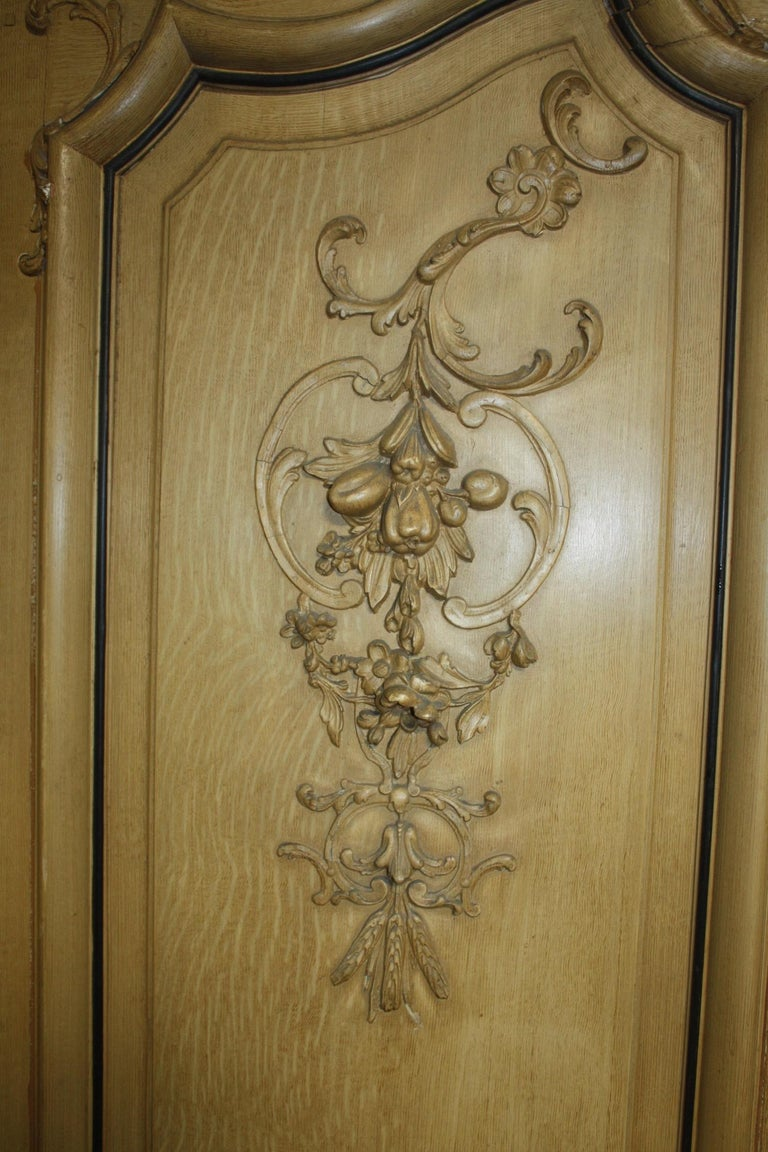 Napoleon III Magnificent Pair of 19th Century French Doors For Sale
