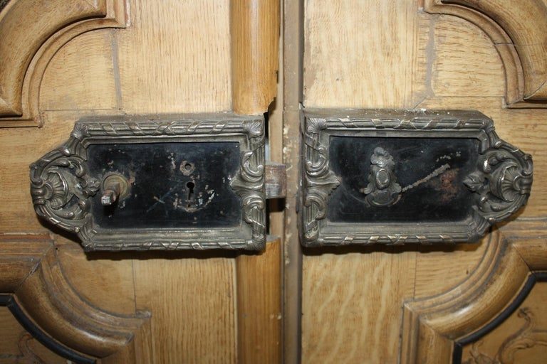Magnificent Pair of 19th Century French Doors For Sale 1
