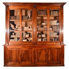 Magnificent Walnut Biblioteque
